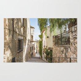 Beautiful Spanish Village Rug