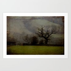 Farndale in rain Art Print