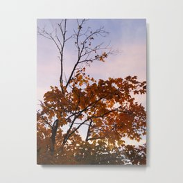 The Leaves That Remain Metal Print