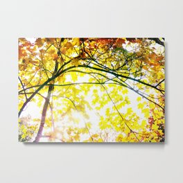 Lovely Autumn Leaves Tree Branch Nature - Canvas Texture Metal Print