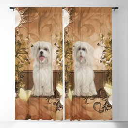 Cute maltese puppy Blackout Curtain