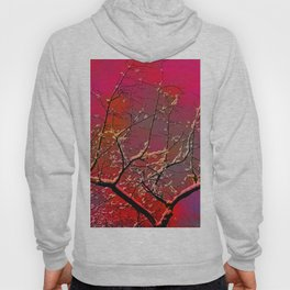 Branch on a background of the sky Hoody