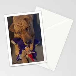 """""""Toys!"""" from the photo series""""My dog, PLaY-DoH"""" Stationery Cards"""