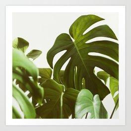 Verdure #5 Art Print