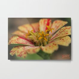 Tiny Worlds Series: Pink and Yellow  Metal Print