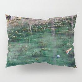 Edge of Winter Pillow Sham