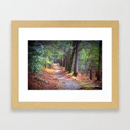 Secret Pathway Framed Art Print