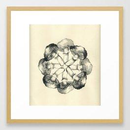 Sooty Head Mandala Framed Art Print