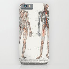 The Human Blood Vessels 1898 iPhone Case