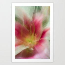 Abstract Pink, Yellow, White Lily-Fleur Blur Series Art Print