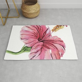 Hibiscus mallow Malvaceae warm temperate subtropical tropical regions Rug