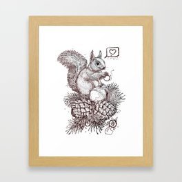 Crazy squirrel Framed Art Print