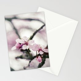 Cherry Blossom Flower - Hill Cherry Stationery Cards