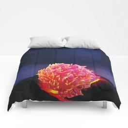 Volcanic Flower Comforters