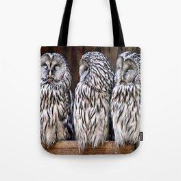 Owl Trilogy Tote Bag