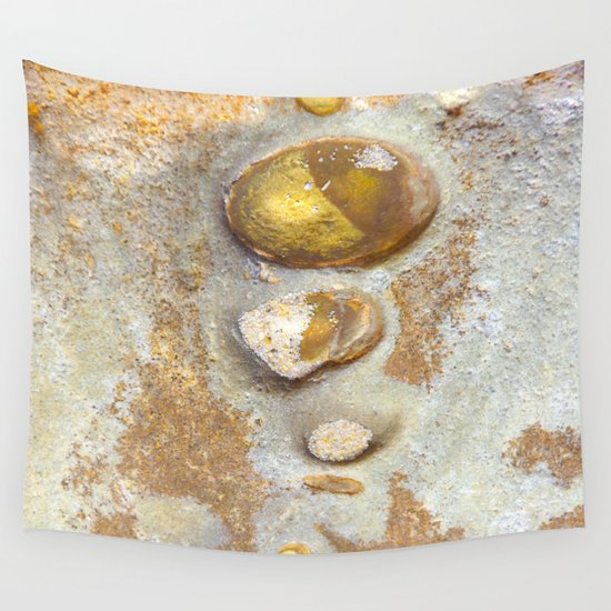 Natures Rock Art 2 Wall Tapestry