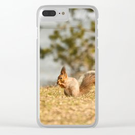 Squirrel's Lunch Break #decor #society6 Clear iPhone Case