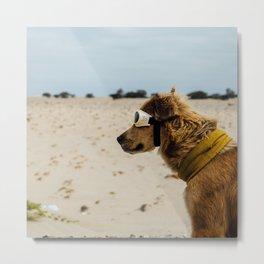 Doggles Metal Print