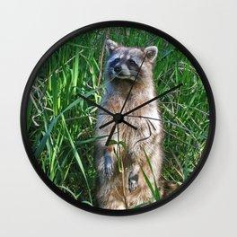Wary Wall Clock