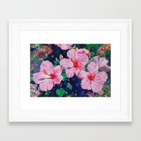 hibiscus Framed Art Prints featuring Hibiscus by Morgan Ralston