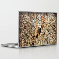woody Laptop & iPad Skins featuring Woody by DeLayne