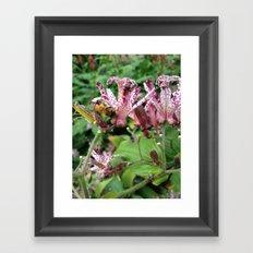 Bee on a flower Framed Art Print