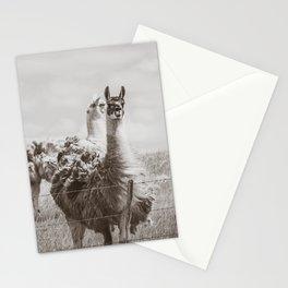 Llamas, North Dakota 3 Stationery Cards