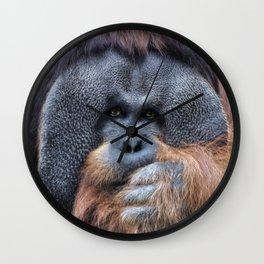 Sumatran Orangutan Wall Clock