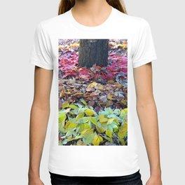 Install 3-3 T-shirt