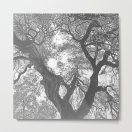 Negative Tree Metal Print