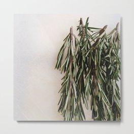 Fresh Rosemary (2) Metal Print