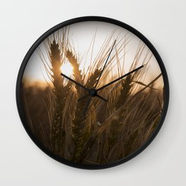 Wheat Holding the Sunset Wall Clock