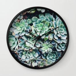 Plants, Succulent, Nature, Modern art, Art, Minimal, Wall art Wall Clock