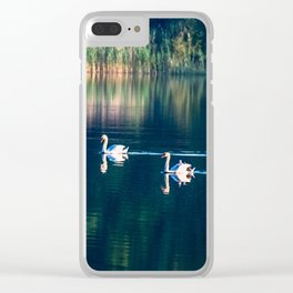 Swan family Clear iPhone Case