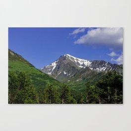 Scenic Seward Highway - Summer Canvas Print