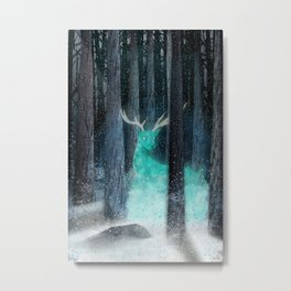 frost, flares Metal Print