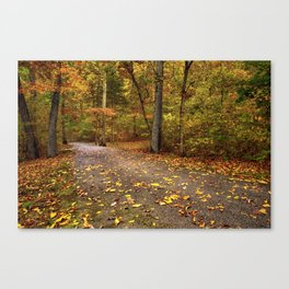On the Way - Autumn Trail Canvas Print