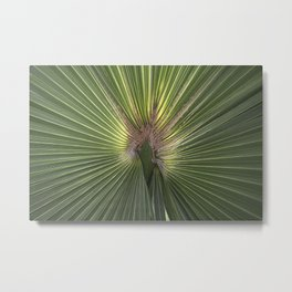 Heart of a Palm Metal Print