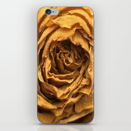 Old Rose iPhone Skin