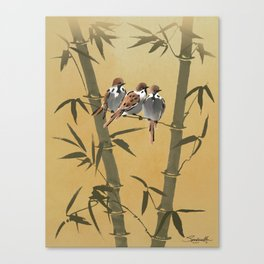 Three Sparrows In Bamboo Tree Canvas Print