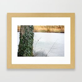 Laced in Ivy Framed Art Print
