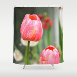 Summer sweet Shower Curtain