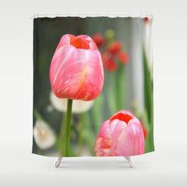 Summer sweet Shower Curtain