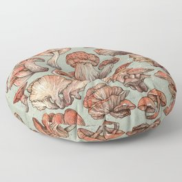 A Series of Mushrooms Floor Pillow