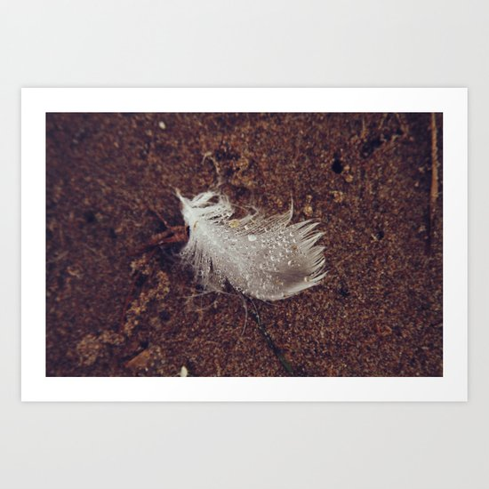 Beach Feathers 2 Art Print