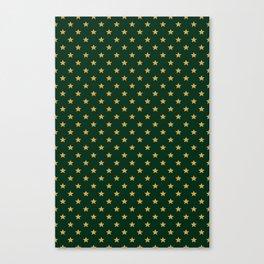 Pattern Stars Canvas Print