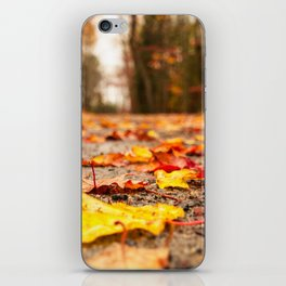 Fall on the Road iPhone Skin