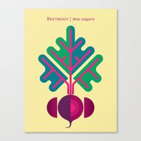 vegetable Canvas Prints featuring Vegetable: Beetroot by Christopher Dina