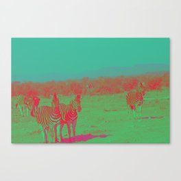 Psychedelic Zebra Canvas Print