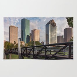 Houston over the bayou! Rug